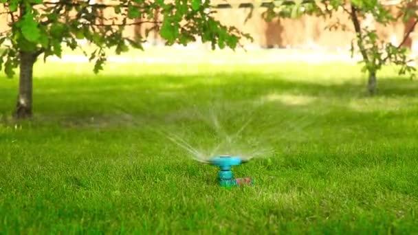 Rotační vodní postřikovač na trávníku v pohybu HD 1920x1080