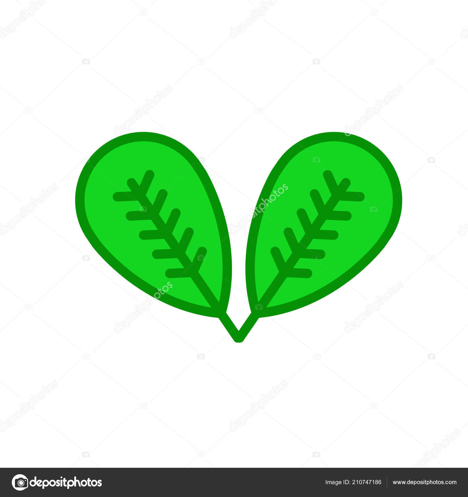 Plum Leaf Icon Vector Sign And Symbol Isolated On White Backgrou