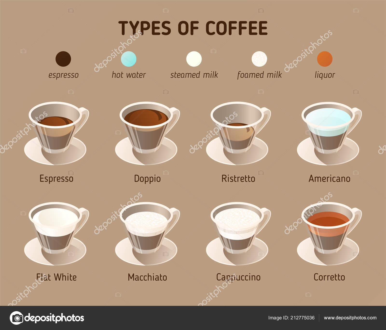 Káva Typy Vektor Izometrické Ikony Infografika Koncept