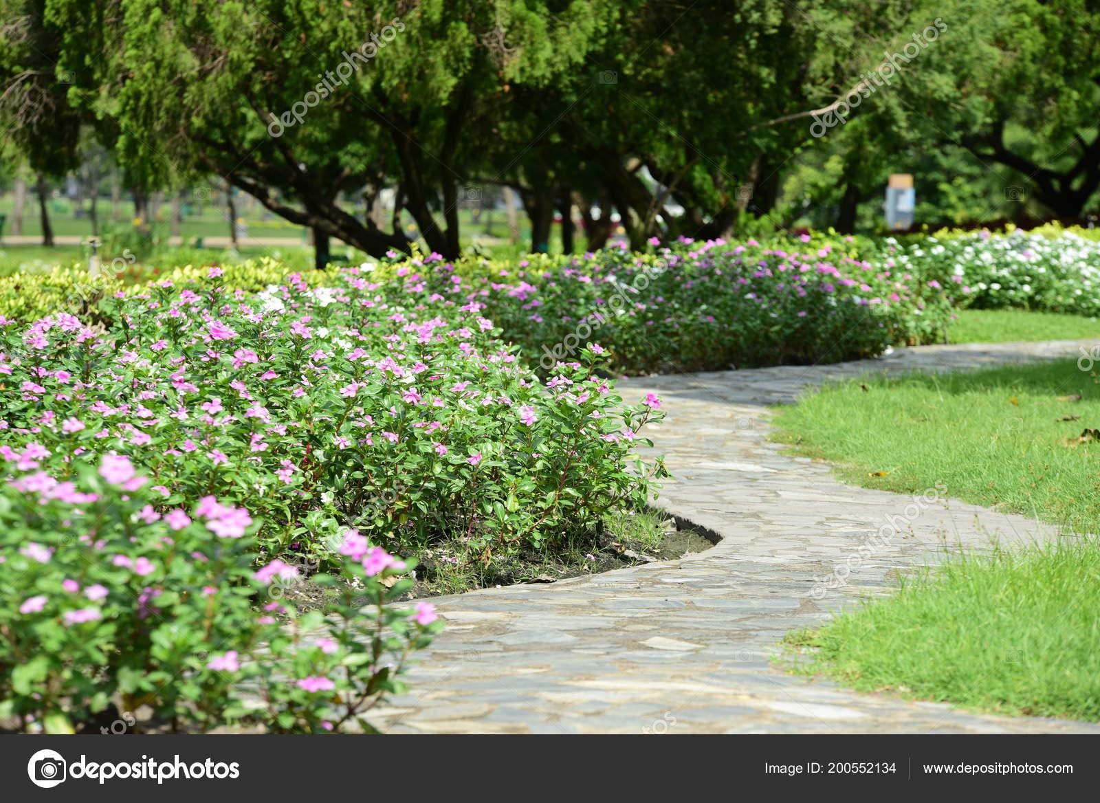 Schöner Garten Mit Bunten Blumen. Gepflegten Gartenanlage. Park. Schöner  Garten U2014 Foto Von Tharathiponsri@gmail.com| ...