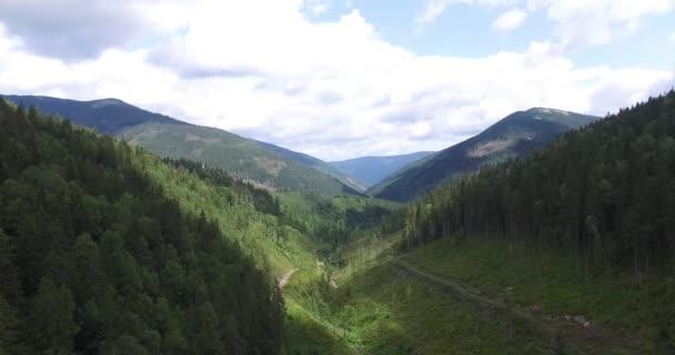 Letecké natáčení: Krásné krajiny horské údolí Zelený strom lesní cesta Blue Sky prosluněná povaha