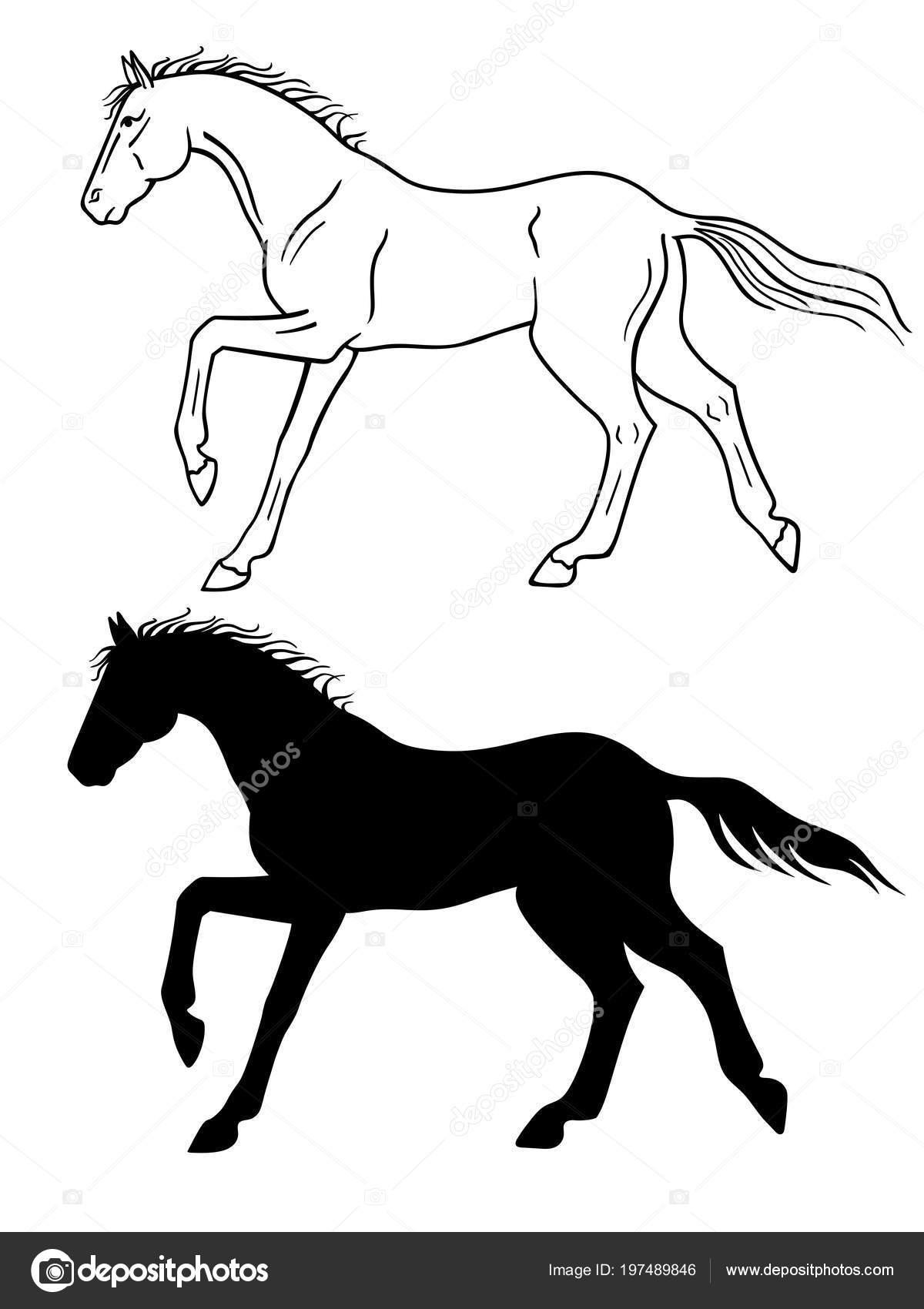 Dibujos Caballos Corriendo Carreras Caballo Galopa También