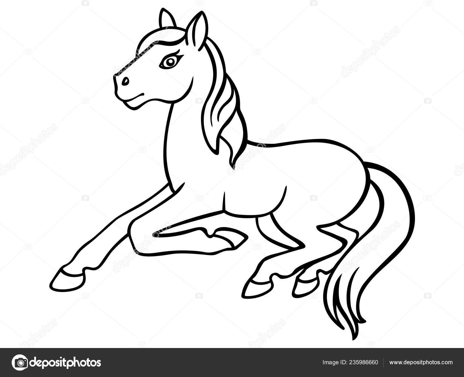 Cavallo Da Colorare Per Bambini.Puledro Piccolo Cavallo Foto Lineare Colorazione Pony Libro