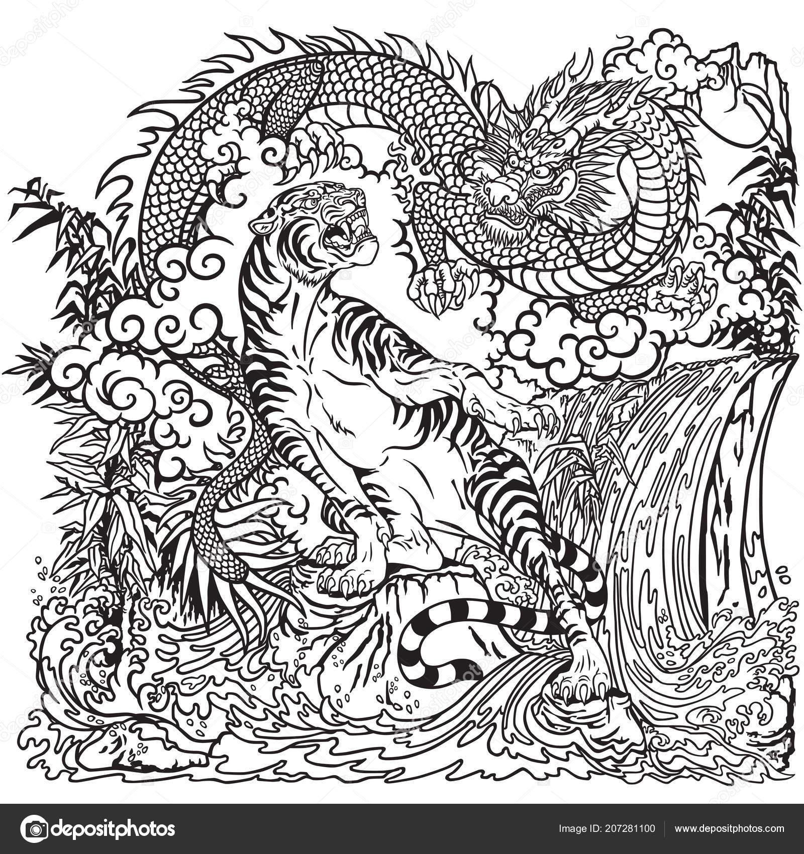 Chinesische Drachen Und Tiger Der Landschaft Mit Wasserfall Felsen