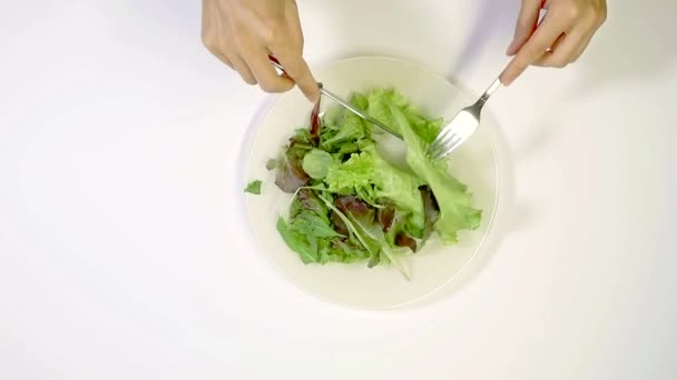 housewife is mixing leaves of different kind of lettuce in plate, by knife and fork, top view