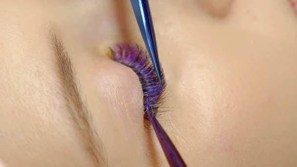 Detail samice oka. hlavní prodlužování ukazuje pinzetou výsledek vícebarevné objem