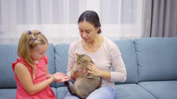 Süßes Kind und Mutter sitzt auf einer Couch zu Hause und kuscheln mit einer Katze, weiche schöne Kätzchen.