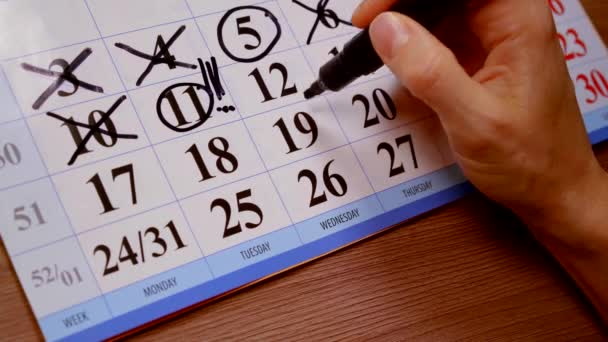 close up. calendar of the month womens hand felt pen highlights important days this week