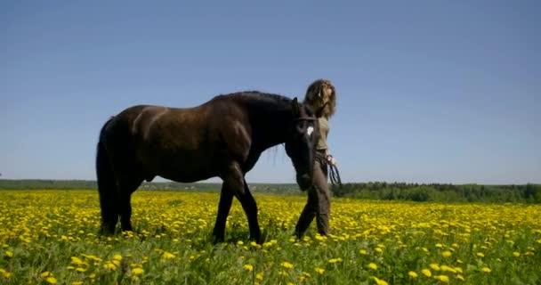 felnőtt nő és sötét ló áll réten sok sárga virágok a nyári napon