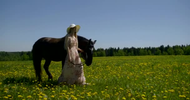 romantic woman is holding reins of horse and walking in field in sunny summer day