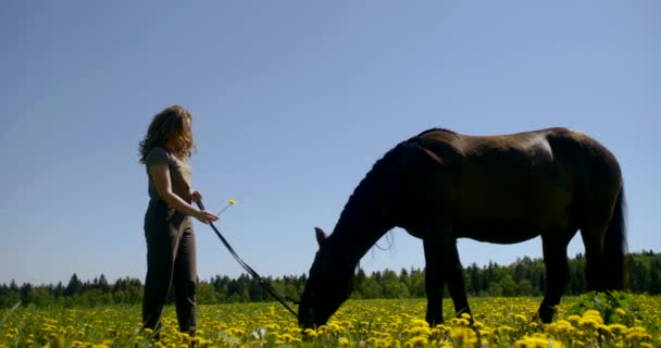 carefree teen girl is holding reins of horse standing on lawn