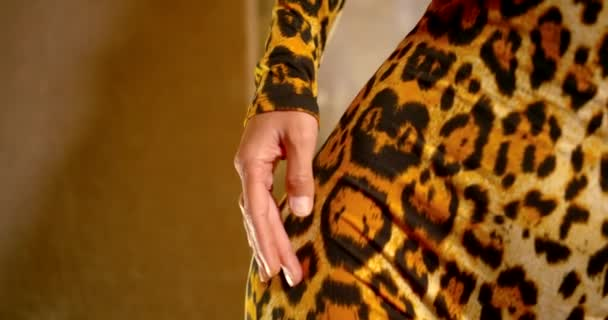 the girl runs her hand over her body. shes wearing a leopard print jumpsuit. the camera moves behind the hand