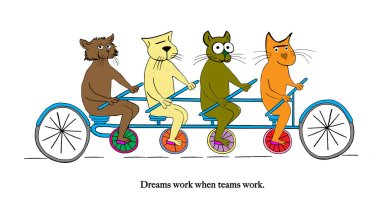 A group of cat friends are out for a ride.