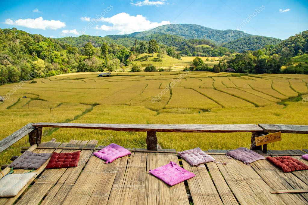 Beautiful landscape view of golden rice terraces fields and house  with Mature paddy rice in Thailand