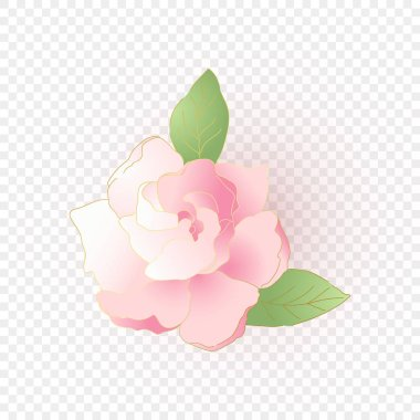 Isolated pink flower. Vector floral element