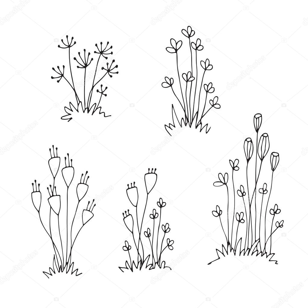Set of outline hand drawn flowers, sketch art, freehand drawing, doodle flowers