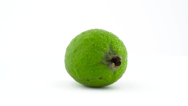 Jeden celý feijoa ovoce s vodou kapky, otočení na točnu izolovaných na bílém pozadí. Zblízka. Makro