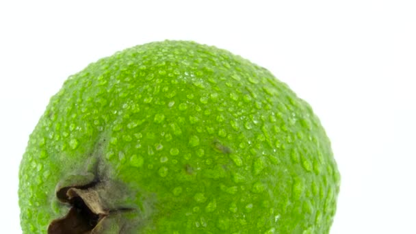 Macro shooting of one whole feijoa fruit with water drops. Slowly rotating on the turntable isolated on the white background. Close up. Macro.