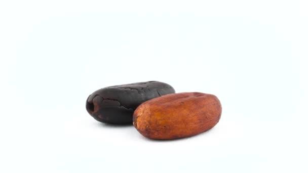 eine geröstete und eine nicht geröstete getrocknete Kakaobohne. Drehen auf der Drehscheibe isoliert auf weißem Hintergrund. Nahaufnahme. Makro.