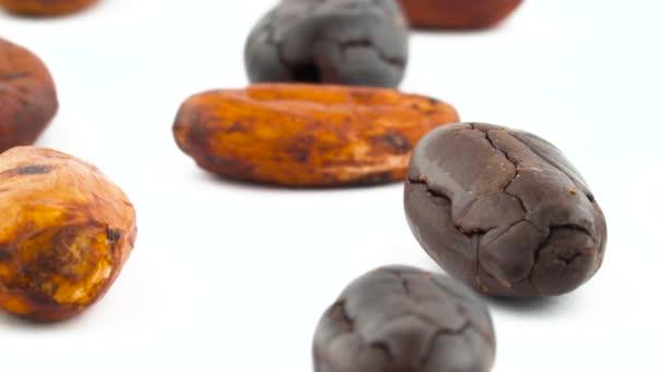 Makroschießen von verstreuten Kakaobohnen. gebraten und getrocknet. Drehen auf der Drehscheibe isoliert auf weißem Hintergrund. Nahaufnahme.