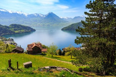 Beautiful nature view and houses on mountain slope with Luzern lake and mountains in background, view from Rigi Railways on the way to Rigi Kulm in Switzerland