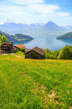 Beautiful nature view and houses on mountain slope with Luzern lake and mountains in background, view from Rigi bahn cogwheel train on the way to Rigi Kulm in Switzerland
