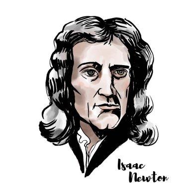 Isaac Newton suluboya vektör portre mürekkep ile kontür. İngiliz matematikçi, gökbilimci, teolog, yazar ve fizikçi.