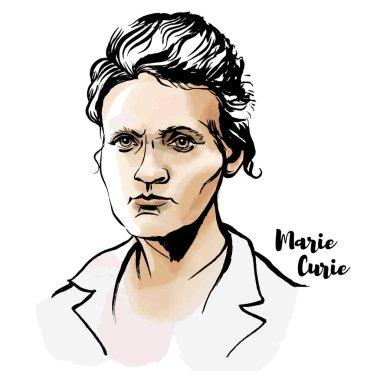 Marie Sklodowska Curie suluboya vektör portre mürekkep ile kontür. Bir Nobel Ödülü kazanan ilk kadın.