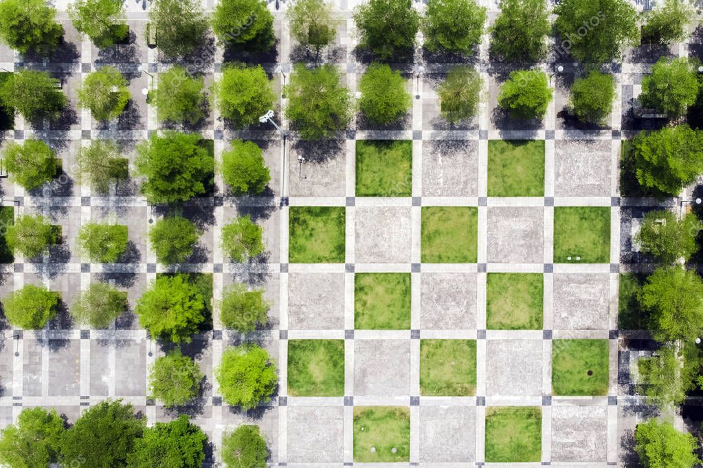 Rational Urban Design. Top View of Chess Squares, Trees And Pavement in the Green Park in Shenzhen, China.