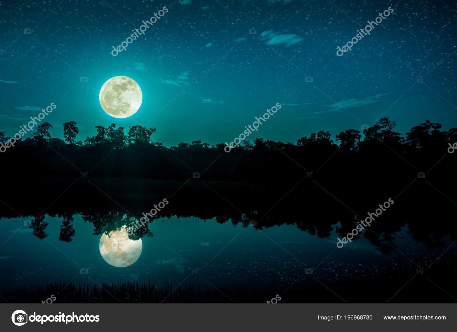 Paisajes De Noche Con Luna Llena Y Estrellas
