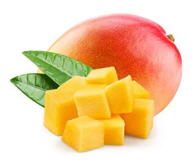Mango slice isolated on white background stock vector