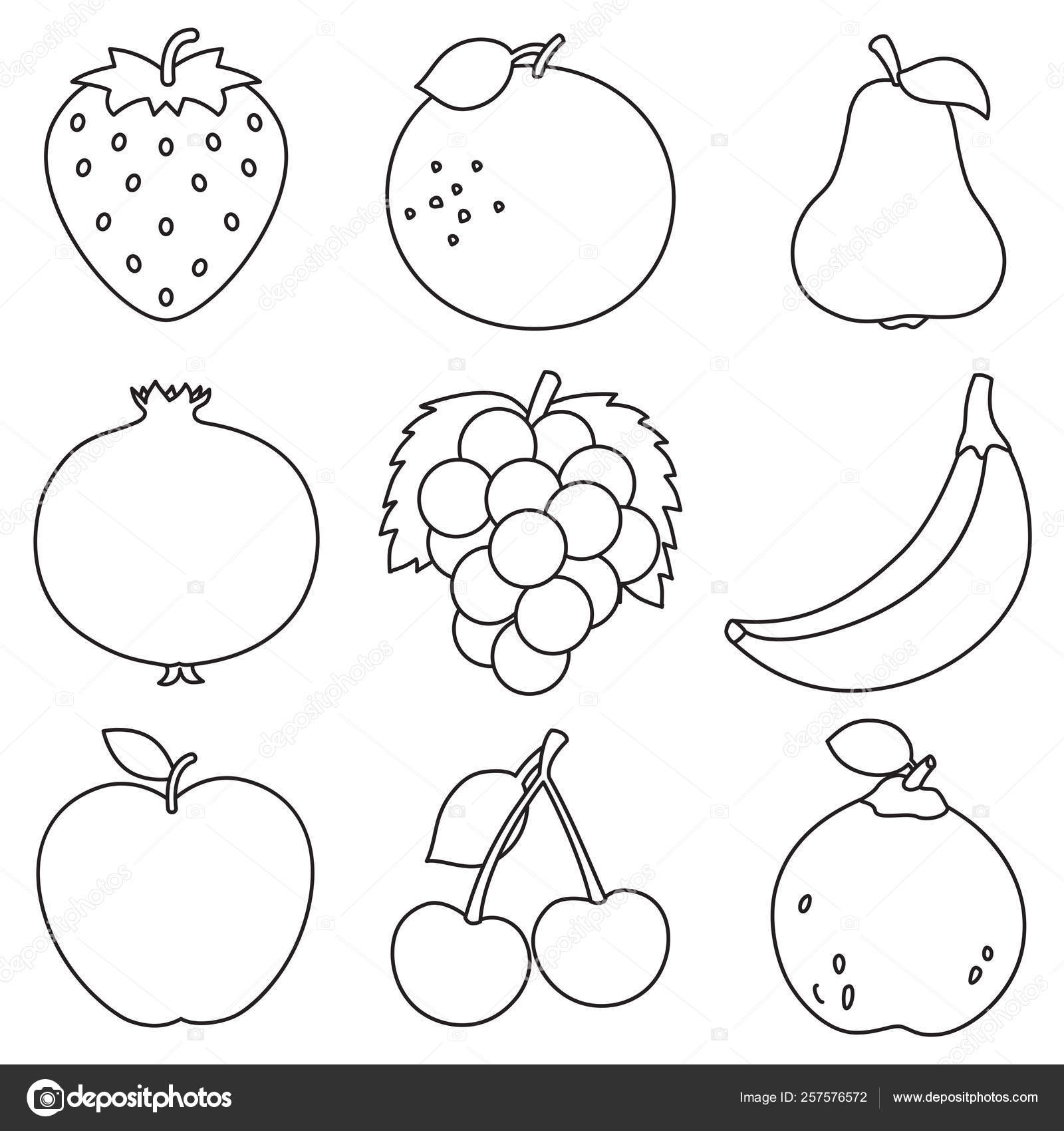 Vector Illustration Fruits Coloring Page — Stock Vector ...