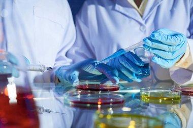 Unrecognizable researchers pouring liquid, biologists experiment stock vector