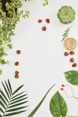 Image of green flowers and plant with strawberries making frame around on white background