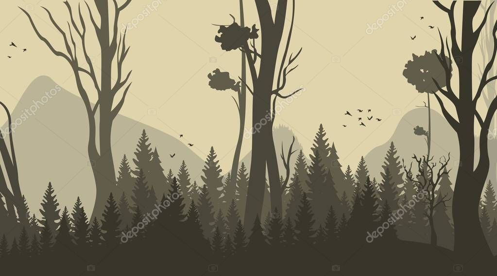 Vector Illustration Cartoon Forest Background