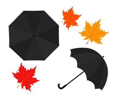 Rain umbrella and autumn leaves on white background. Vector illustration icon