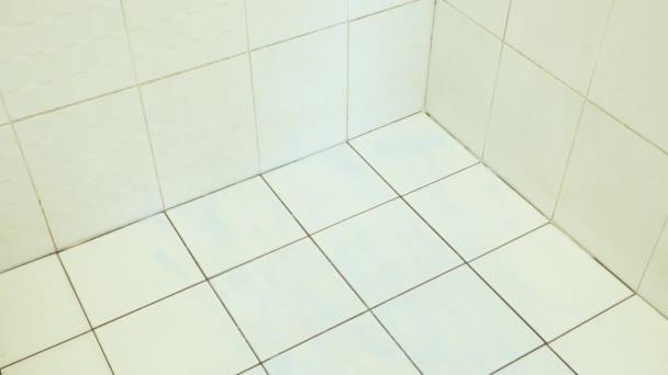 Dona De Casa Limpar E Esfregar O Chão Do Banheiro Com Escova De Férias