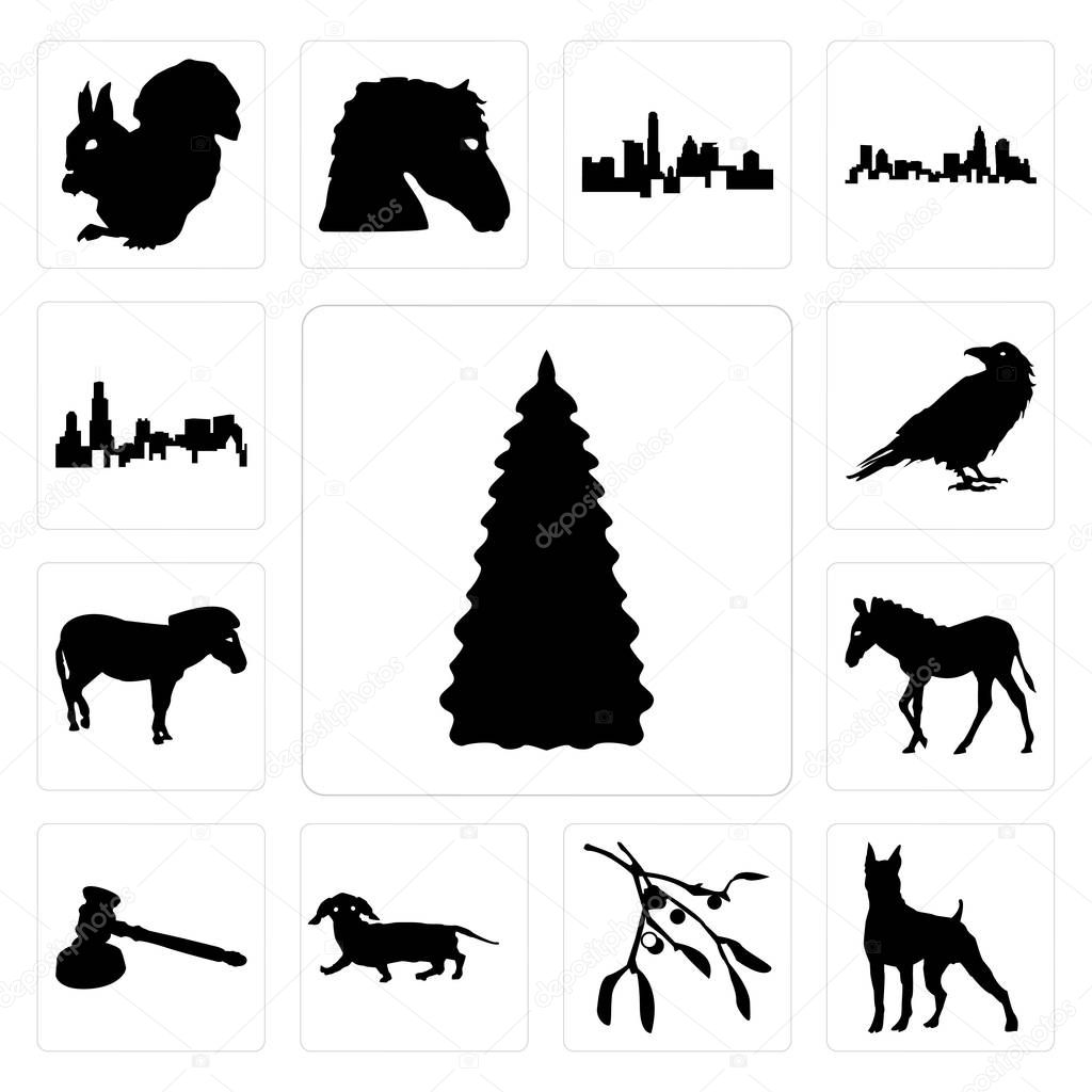 Set Of 13 Simple Editable Icons Such As Christmas Tree Outline Images On White Background Boxer Mistletoe Background Can Be Used For Mobile Web Ui Premium Vector In Adobe Illustrator Ai