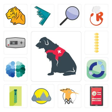 Set Of 13 simple editable icons such as service dog, login screen, hoopoe, montain, zipper, sector, free brain, spine, thermostat can be used for mobile, web UI