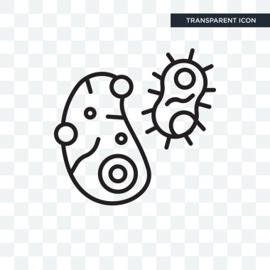 Bacteria vector icon isolated on transparent background, Bacteri