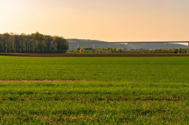 View over the Ruhraue between Essen-Kettwig and Mintard to the Ruhrtalbridge in the evening sun, Germany
