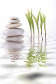 masáže a relaxace ve wellness centru