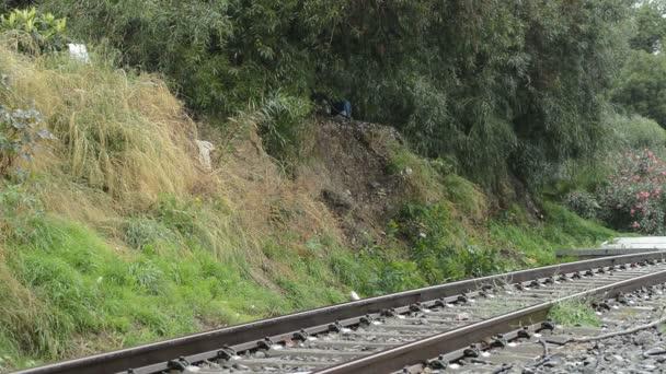 Számok, villamossal vagy vonattal egy esős nap