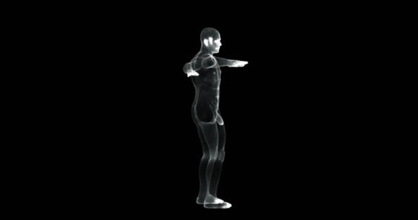 Obrazovka s hologramem 3D muže, který se otáčí ve vitruanské pozici-smyčka