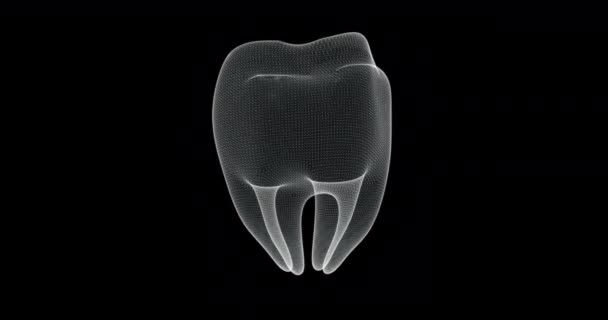 Hologram screen 3d of molar tooth of human body - loop