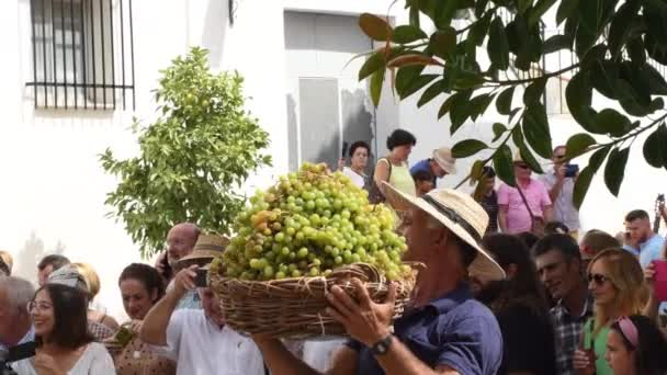 Farmer locals unloading from his head wicker basket loaded with muscat grapes