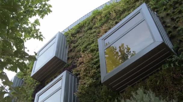 Kovová okna v budově s vegetační stěnou. Zelené prostředí