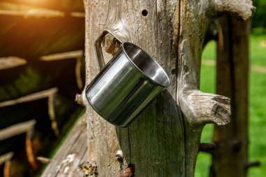 Tourist steel cup in the summer forest outdoors.