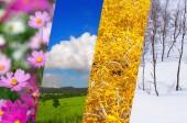 Fotografie Wunderschöne Natur Collage - vier Jahreszeiten des Jahres Collage, andere Zeit des Jahres - Winter, Frühling, Sommer, Herbst