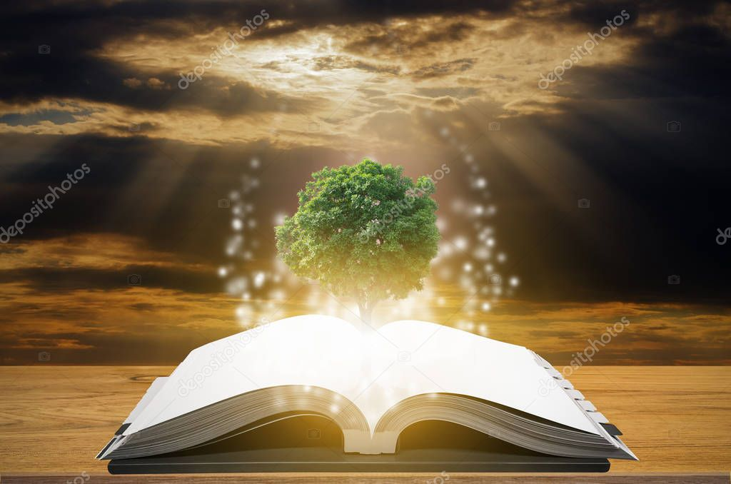 Knowledge concept of education and knowledge with tree growing from open book.